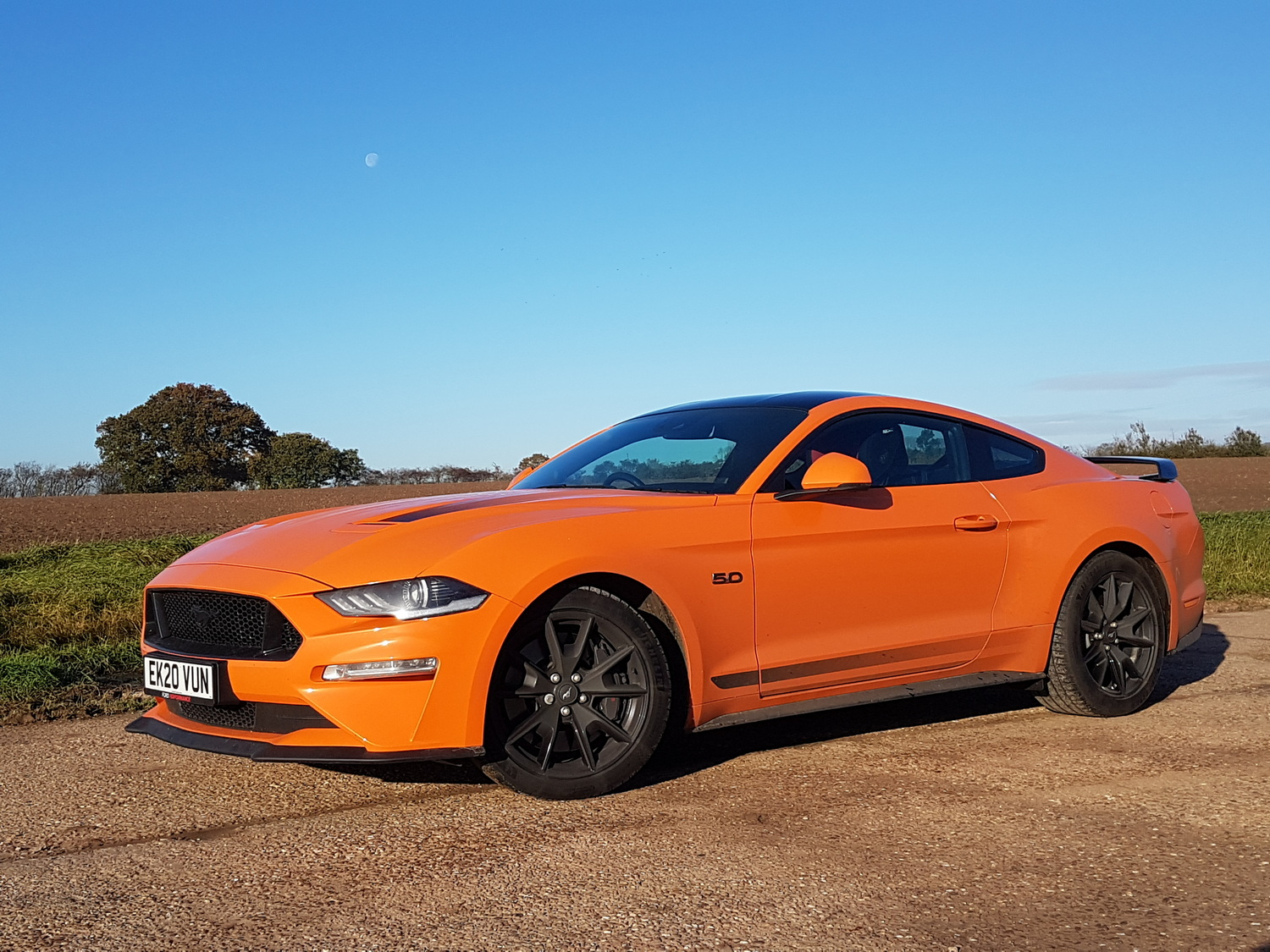 Driven: Ford Mustang55 Edition. Image by Ford.