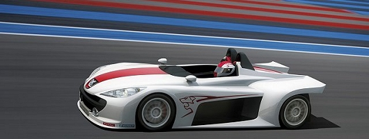 Peugeot's racing team spreads its web. Image by Peugeot.