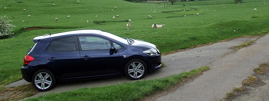 Auris, Toyota For Average. Image By Dave Jenkins.
